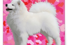 Stickers http://www.zazzle.com/samoyed_matching_sq_glossy_stickers_see_desc_square_sticker-217315585993680305