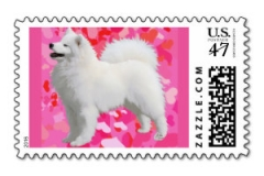 Postage Stamp - Fuchia & Hearts http://www.zazzle.com/samoyed_stamp_w_fushia_hearts_po_does_not_carry-172961013286001131