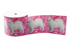 Ribbon http://www.zazzle.com/samoyed_matching_3_wide_grosgrain_ribbon_2_yd_grosgrain_ribbon-256665958001329445