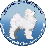 NSR Logo Products
