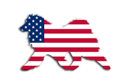 USA FLag Sammy Window Decal
