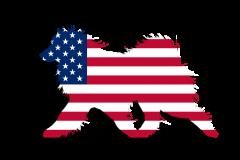 USA FLag Sammy Window Decal